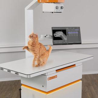 """Foto på röntgenutrustning """"Amadeo Mini II"""" med en katt på röntgenbordet."""